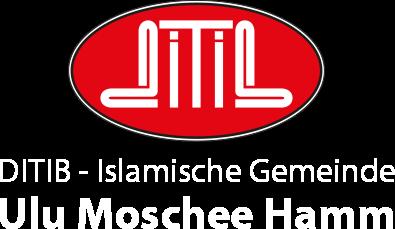 Ulu Moschee